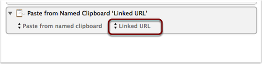 step_5_change_the_default_clipboard_to_the_linked_url_you.png